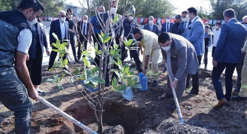 Ceyhan'da 3 bin fidan toprakla buluştu